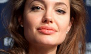 Nederlandse mutualiteit zet Angelina Jolie in tegen homofilie