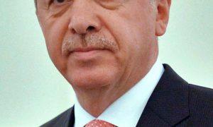 Met deze beledigingen aan het adres van Recep Tayyip Erdogan zult u altijd wegkomen