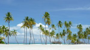 Zelfs op belastingparadijzen zoals de Kaaimaneilanden zijn miljonairs niet langer veilig, klaagt Fiscal Amnesty International aan. (Foto: Pixabay)