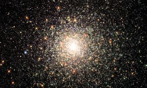 Schauvliege dagvaardt universum