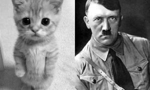10 dingen die totaal niet op Hitler lijken
