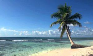 Volledige redactie met vakantie in Thailand