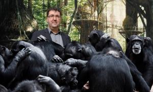 Groen vormt nieuw kartel met apen Antwerpse Zoo