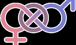 Instituut voor Gelijkheid van Vrouwen en Mannen wordt Instituut voor Gelijkheid van Personen