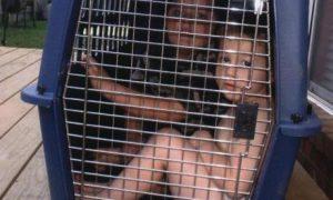 België koopt 150.000 kinderen tegen vergrijzing