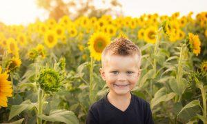 Kinderdrieslagstelsel vervangt kinderbijslag