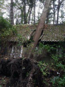 De nietsontziende herfststorm vernielde zelfs een schuur bij Lieven Scheire.