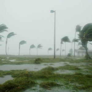 Klap voor wereldeconomie: orkaan Dorian vernietigt hoofdkantoren multinationals