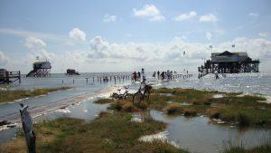 West-Vlamingen slaan massaal op de vlucht voor het wassende water. (Foto: doctoranne, CC Pixabay)